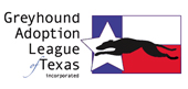 Greyhound Adoption League Texas
